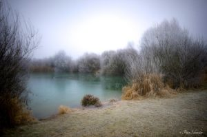 Morning at the pond. by Phototubby
