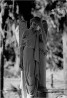 weeping angel by miblover334