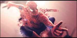Spiderman Signature by murr3
