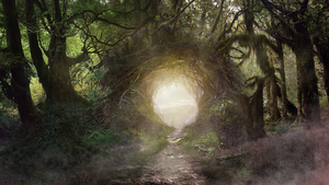 Magical Forest matte by TheArtofSaul