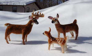 Custom White-Tailed Deer Family by DancingVulture