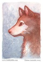 ACEO: watercolor dog by emla