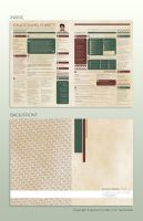 Full Designer Resume by Vanhardisk