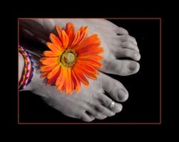 Hippie Toes by TracyD