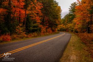 HDR Autumn Road 2 by Nebey