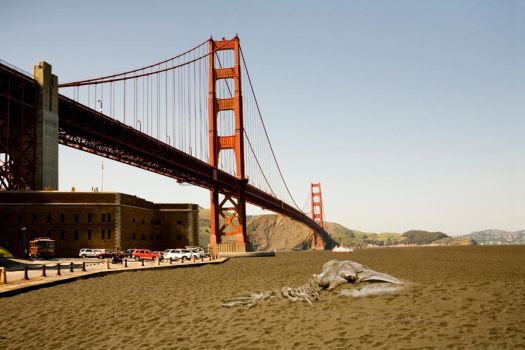 Sand Francisco by TikiDansPhotography