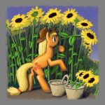 Picking Sunflowers by Dahtamnay