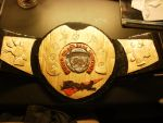 Super Smash Bros. Brawl Championship Belt by neeanam