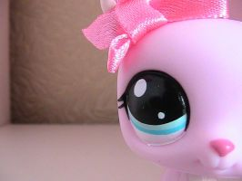 littlest pet shop photography by chloethekitten