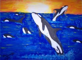 Whales by Trish87