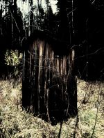 the evil outhouse... by TheSaalahDemon