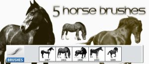 5 Free High-res Horse Photoshop Brushes by designerfied