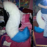 Folf tail by LittleRock3DD