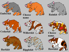 Adoptable Couples' Kits by skyclan199