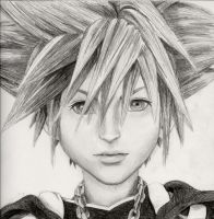 Sora Kingdom Hearts 2 by PinkFish