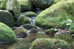 A Study in Flowing Water XVI by ChrisTheJeweler