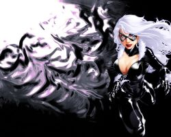 Black cat wallpaper by uncommonman