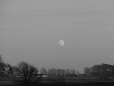 Black and white moon by ToxicAntidote