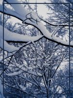 Snowy Branches by danlev