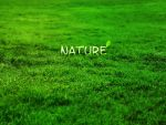 Nature by Black-Metz