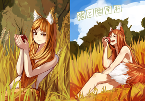 SpiceAndWolf by nosuku