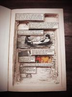 Altered Book by featherblown