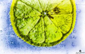 Lemon Slice in Bubbles Painting by mjohanson