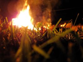 Bonfire from the Grass 2 by RandomBanana11