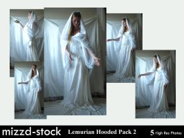Lemurian Empress Hooded 2 by mizzd-stock