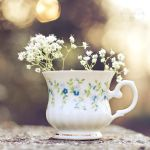 Cup of Beauty by Stefania-R