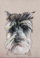 Gabby in pencil by clotus