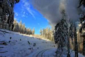 winter wonderland in the resin 6 by MT-Photografien