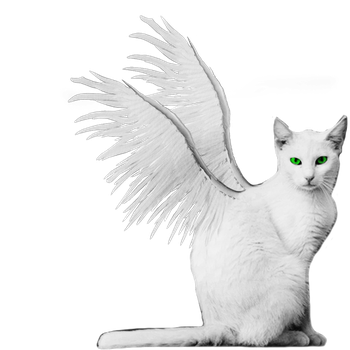 White Winged Kitty PNG Stock Green Eyes Burned by vamp1967