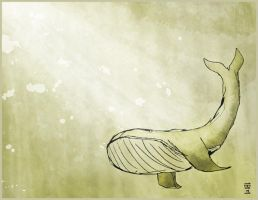 Whale by 143