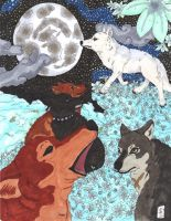 Wolf's Rain by Vulpes-Canis
