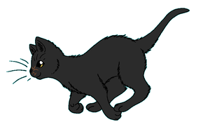 WindClan - Deadfoot by WildpathOfShadowClan