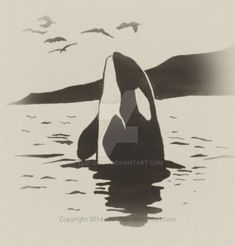 Orca by elio-chan