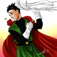 DBZ Great Saiyaman Revealed by nicoy