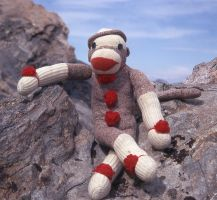 My Sock Monkey on mountaintop by CorazondeDios