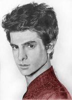 The Amazing Spider-Man (Andrew Garfield) by aurormish