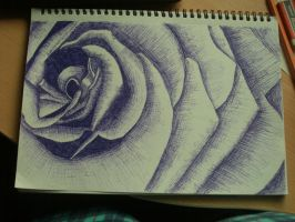 purple rose by MueMue1992