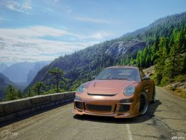 Porsche 911 GT3 Tuned 3 by cipriany