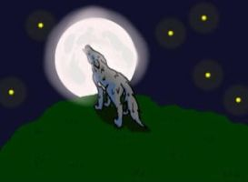 Wolf in the night by ghostdragoness16