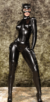 Selina Kyle - Catwoman Suit 1 by Zarnoth