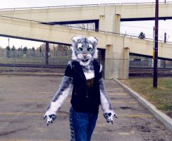 Concrete sunlight- Cat costume by ThundersCry