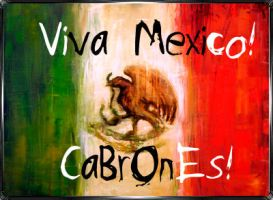 .:Viva Mexico:. by laurix03
