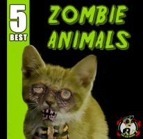 5 Best Zombie Animals by BoredRobot