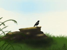 a crow on a rock by therealbloodhound