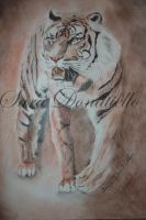 tiger by saraPortrait