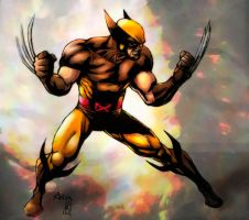 Wolverine (quick colors) by FantasticMystery